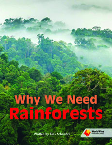 Why We Need Rainforests
