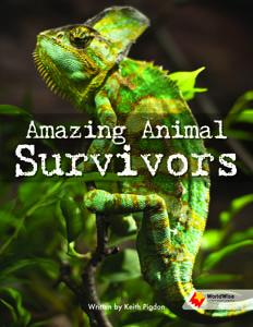 Amazing Animal Survivors