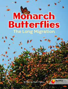 Monarch Butterflies: The Long Migration