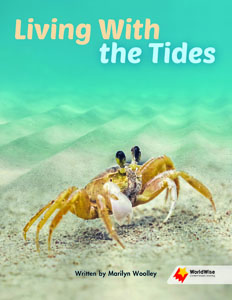 Living With the Tides